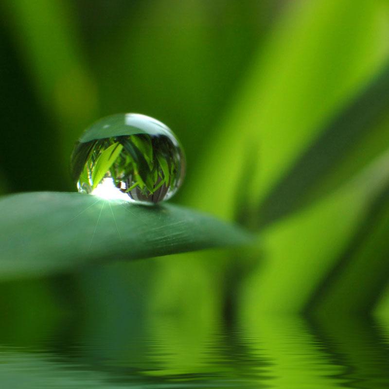 Goccia d'acqua di fonte Nerea